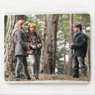 Hermione, Ron, and Harry 2 Mousepads