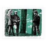 Hermione, Ron, y Harry 1 Tarjeta Postal