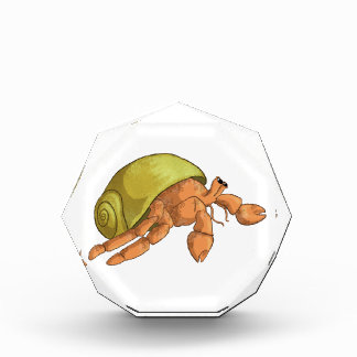 Hermit Crab Acrylic Award