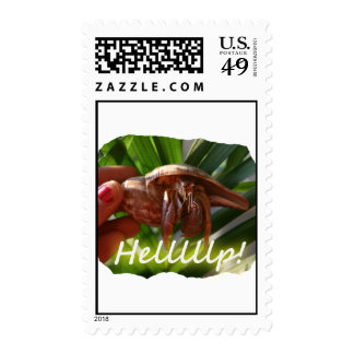 Hermit Crab and Help text , funny animal design Postage Stamps