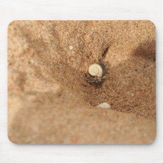 Hermit crab and sands mouse pad