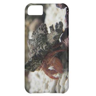 Hermit Crab Case For iPhone 5C