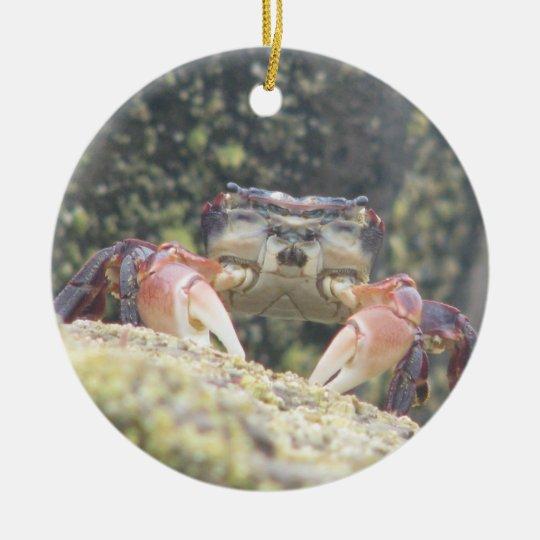 Hermit Crab Ceramic Ornament