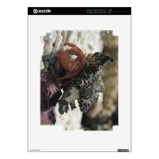 Hermit Crab Decal For The iPad 2