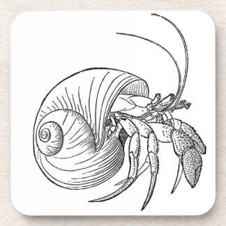 Hermit Crab Illustration (line art) Coaster