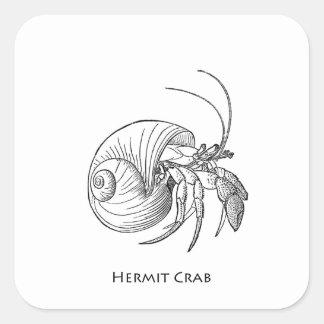 Hermit Crab Illustration (line art) Square Sticker