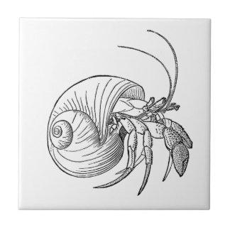 Hermit Crab Illustration (line art) Small Square Tile