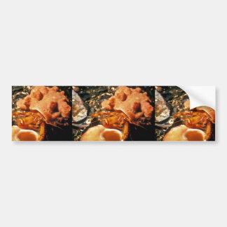 Hermit Crab in Hermit Crab Sponge Bumper Stickers