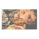 Hermit Crab in Hermit Crab Sponge Business Card Template