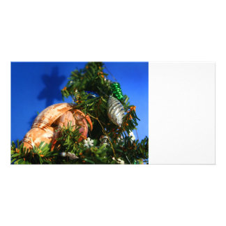 Hermit Crab in Tree blue background Picture Card