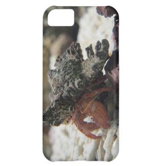 Hermit Crab iPhone 5C Case