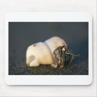 Hermit crab on beach mouse pad