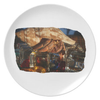 Hermit Crab on Ice Cubes Dinner Plate