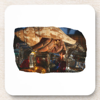 Hermit Crab on Ice Cubes Drink Coasters