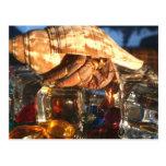 Hermit Crab on Ice Cubes Postcard
