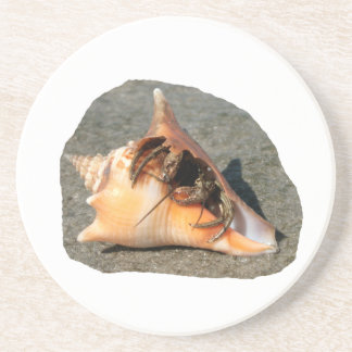 Hermit Crab on Sand Coming out of shell Beverage Coasters