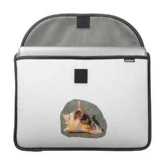 Hermit Crab on Sand Coming out of shell Sleeve For MacBooks