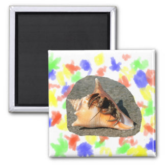 Hermit Crab on Sand Coming out of shell Fridge Magnet