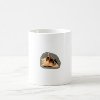 Hermit Crab on Sand Coming out of shell Mug