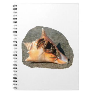 Hermit Crab on Sand Coming out of shell Notebooks