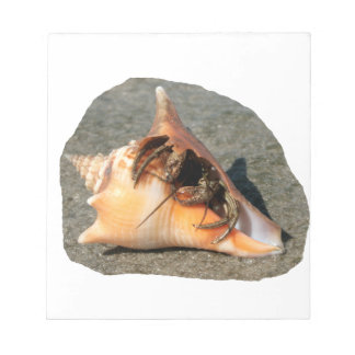 Hermit Crab on Sand Coming out of shell Memo Note Pads