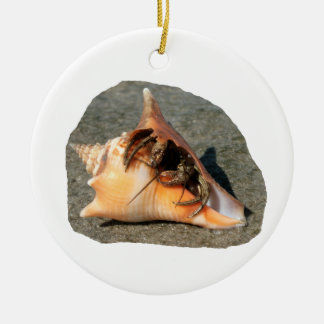 Hermit Crab on Sand Coming out of shell Christmas Ornament