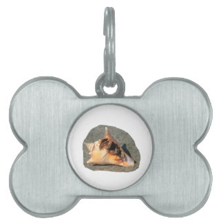Hermit Crab on Sand Coming out of shell Pet Tag