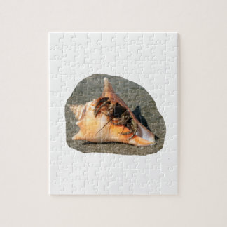 Hermit Crab on Sand Coming out of shell Puzzles