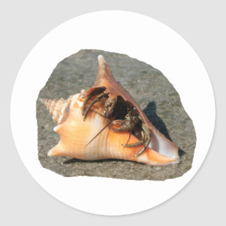 Hermit Crab on Sand Coming out of shell Round Stickers
