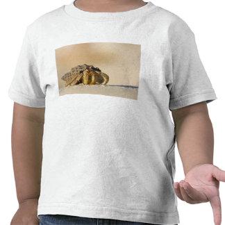 Hermit Crab on white sand beach of Isla Carmen, Tee Shirts