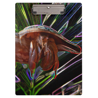 hermit crab out of shell sparkle back clipboard