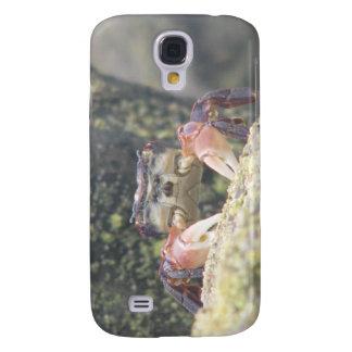Hermit Crab Samsung S4 Case