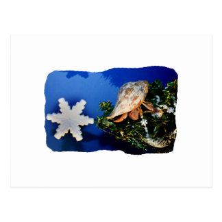 Hermit Crab Star Christmas Tree Design Post Cards