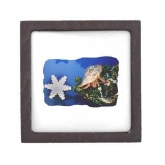 Hermit Crab Star Christmas Tree Design Premium Gift Boxes