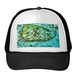 Hermit Crab Trucker Hat