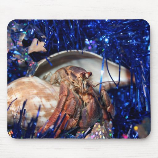 Hermit crab with blue Christmas Holiday tinsel Mouse Pad