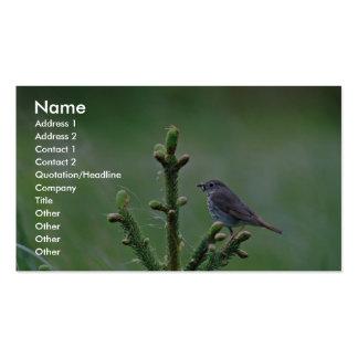 Hermit Thrush Business Card