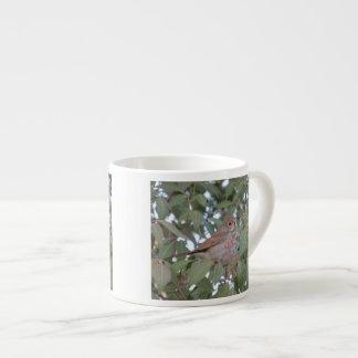 Hermit Thrush Espresso Cup