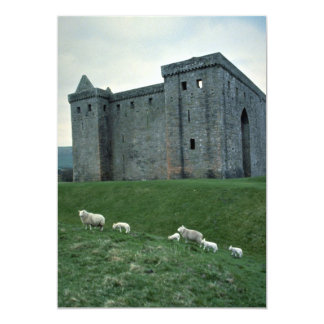 Hermitage Castle with sheep, Scotland Custom Announcements