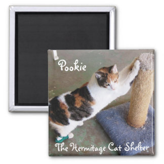 Hermitage Magnet-  Pookie 2 Inch Square Magnet