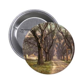 Hermitage plantation Savannah Georgia Buttons