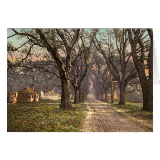 Hermitage plantation Savannah Georgia Card