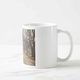 Hermitage plantation Savannah Georgia Coffee Mugs