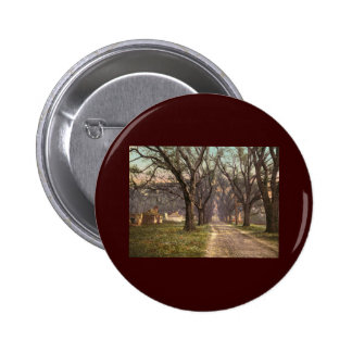 Hermitage plantation Savannah Georgia Pins