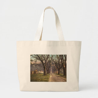 Hermitage plantation Savannah Georgia Tote Bags