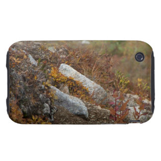 Hermosa Hillside iPhone 3 Tough Covers