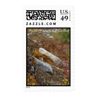 Hermosa Hillside Postage Stamps