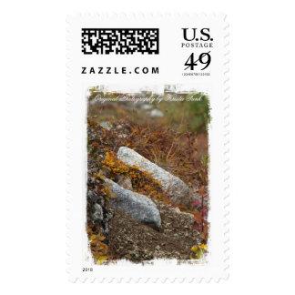Hermosa Hillside Postage Stamp