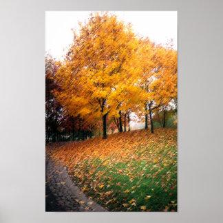 Hermosa vista del otoño póster