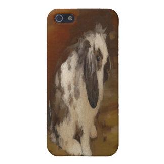 Hermoso, conejo espigado del Lop del bebé iPhone 5 Carcasas